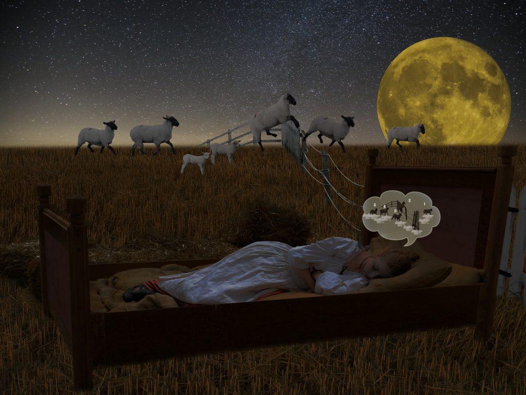 chica contando ovejas para dormir